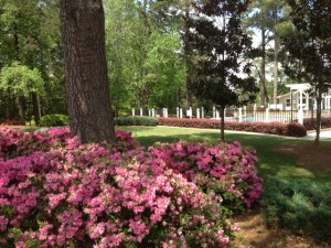 Mountain Lake Apartments in Stone Mountain GA
