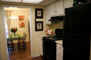 Willow Lake Apartments in Stone Mountain Village, minutes to downtown Atlanta