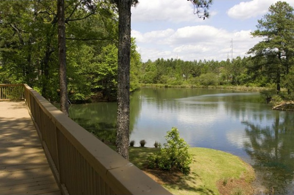 The lake and patio at Mountain Lake Apartments in Stone Mountain, GA