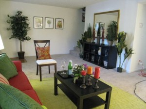 The model living room at The Village at Wesley Chapel